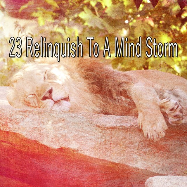 23 Relinquish to a Mind Storm