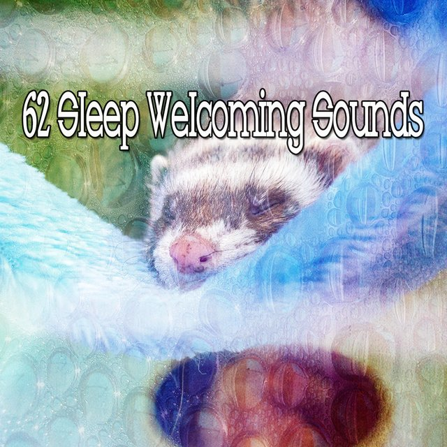 62 Sleep Welcoming Sounds