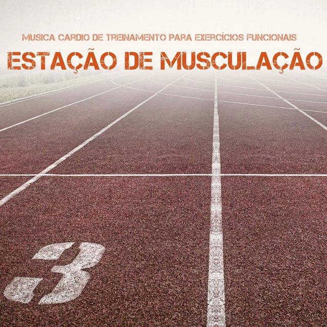 Listen To Um Dois Trez Pronto Para Ir Musicas