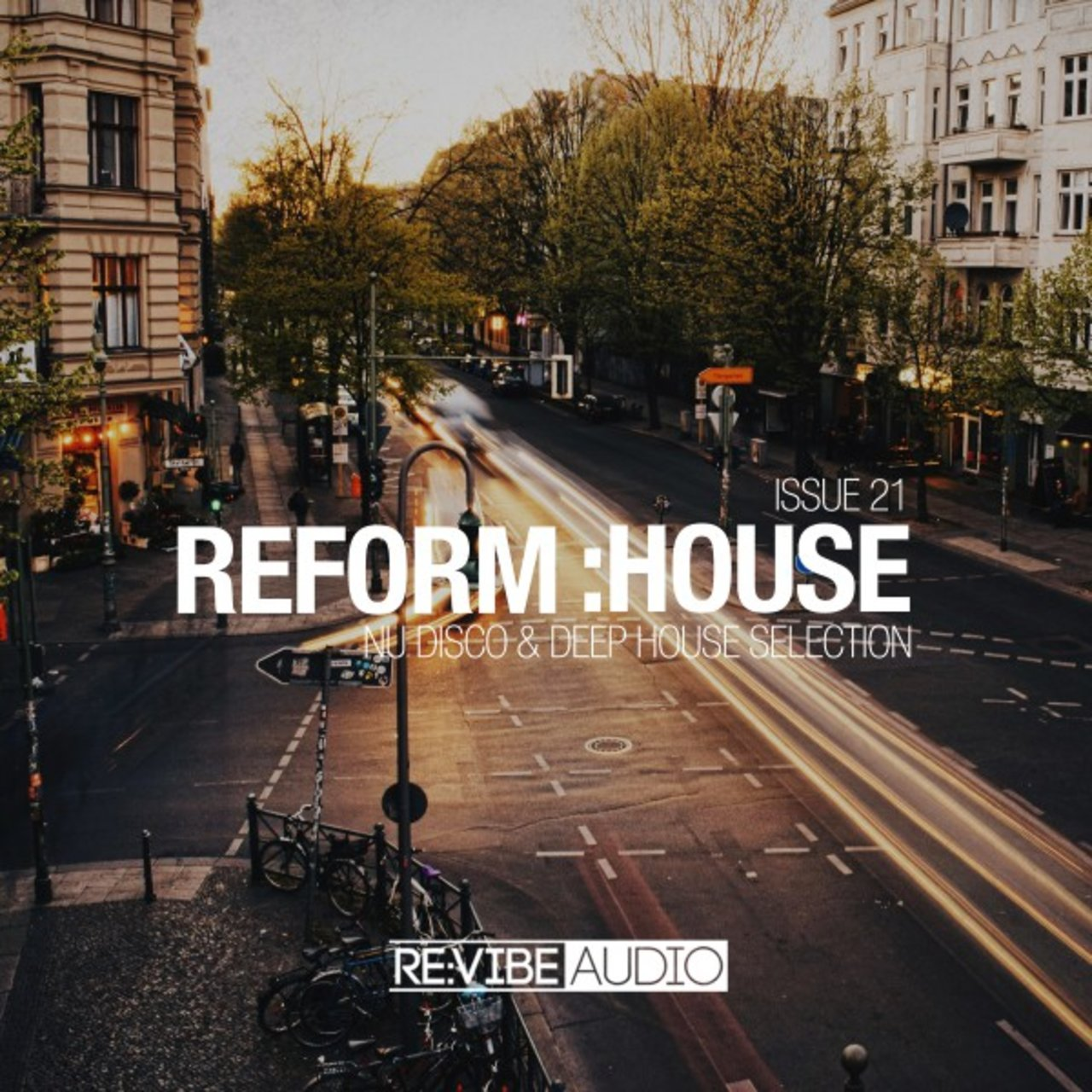 Reform:House Issue 21