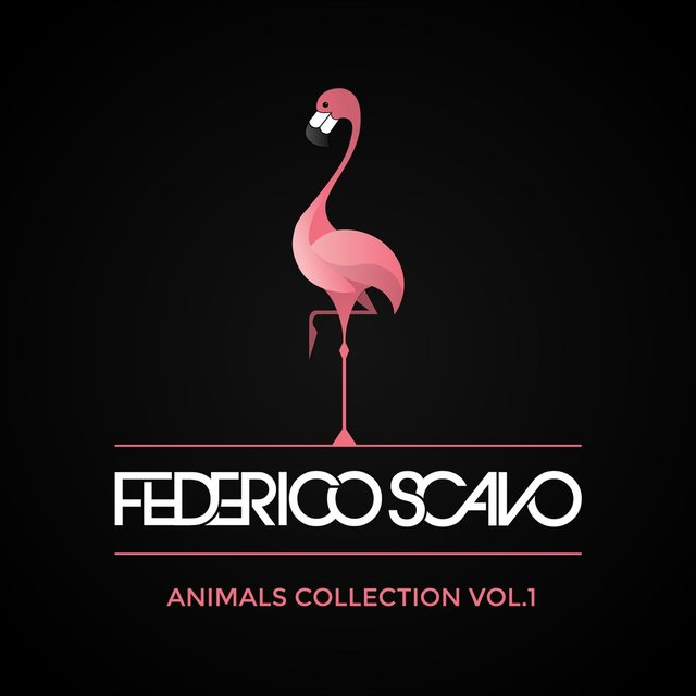 Animals Collection, Vol. 1