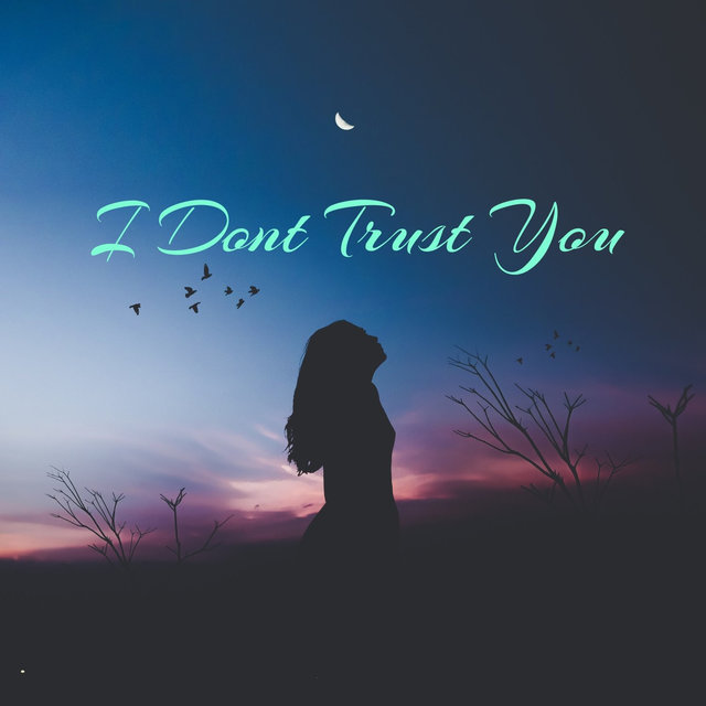 I Dont Trust You