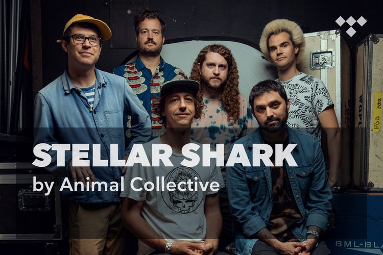Animal Collective: Stellar Shark