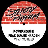 What You Need (feat. Duane Harden) [Full Intention Radio Edit]