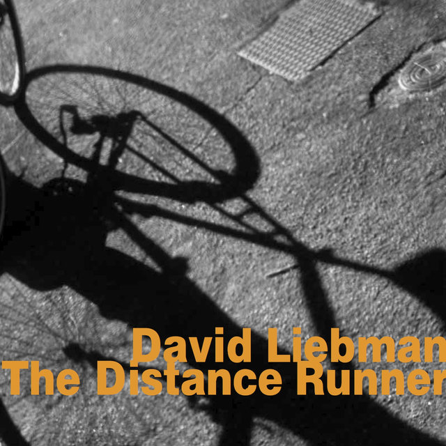 The Distance Runner