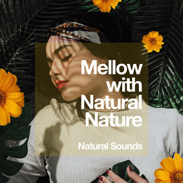 Mellow with Natural Nature