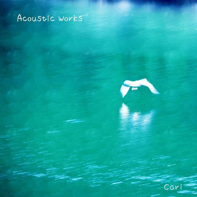 Acoustic Works