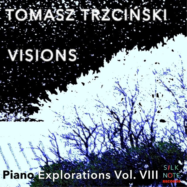 Piano Exploration, Vol. 8: Visions