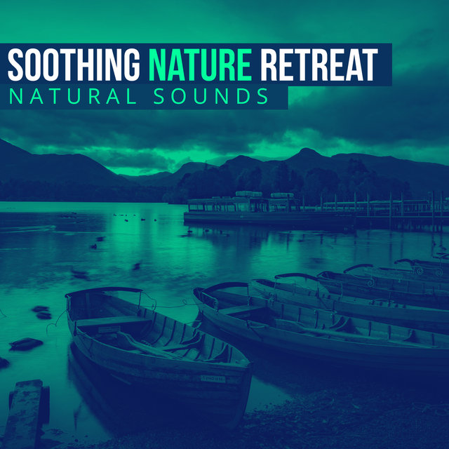 Soothing Nature Retreat