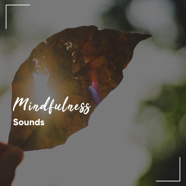 #16 Mindfulness Sounds for Soothing Spa Experience