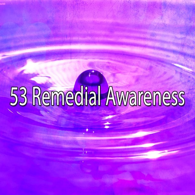 53 Remedial Awareness