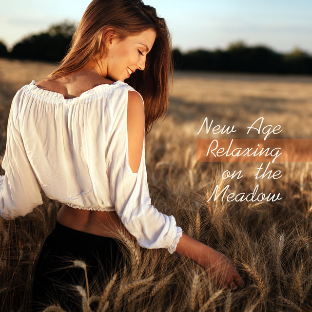 New Age Relaxing on the Meadow: 2019 Nature Sounds with Instrumental Melodies for Total Relaxation, Calming Down, Stress Relief