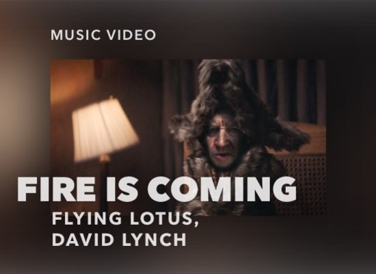 Flying Lotus, David Lynch