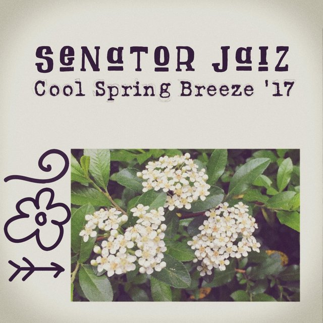 Cool Spring Breeze 17