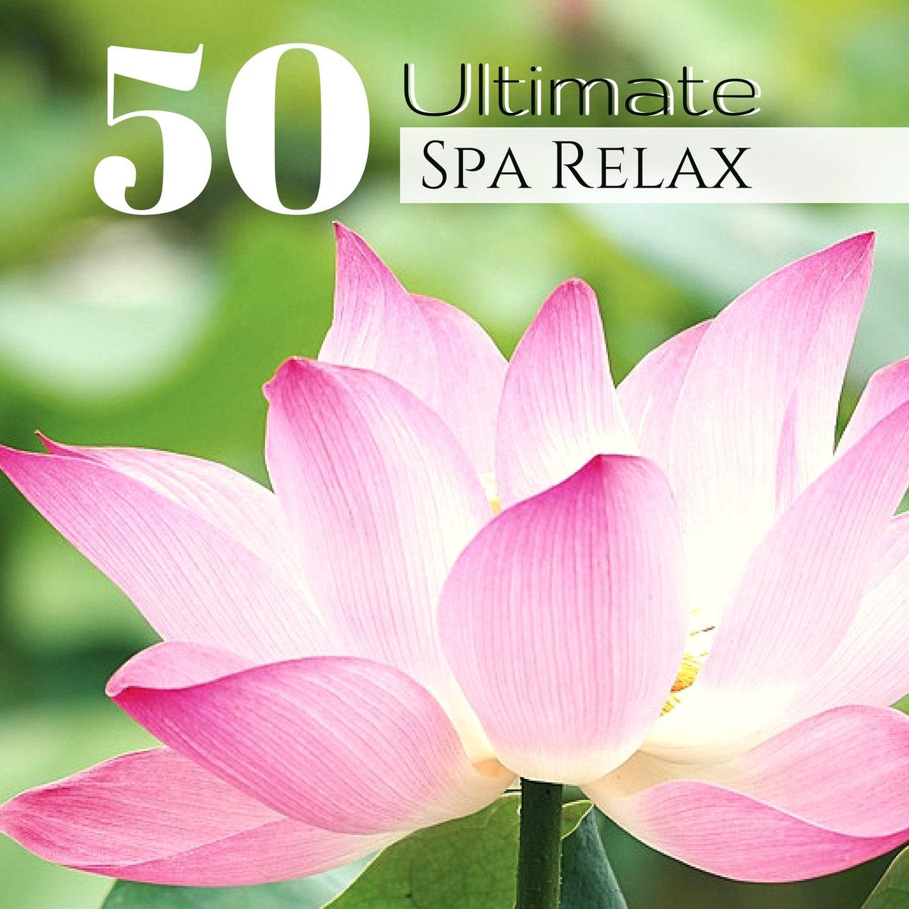 Tidal listen to best spa music collection 50 dream spa sounds for 50 ultimate spa relax zen lotus garden meditation music collection izmirmasajfo