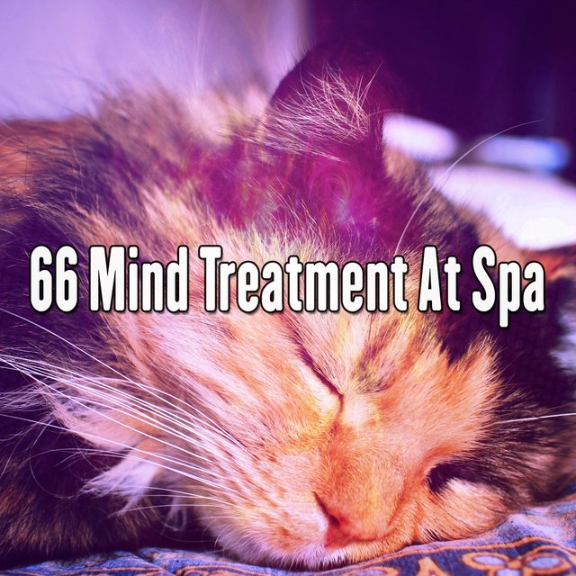 66 Mind Treatment at Spa