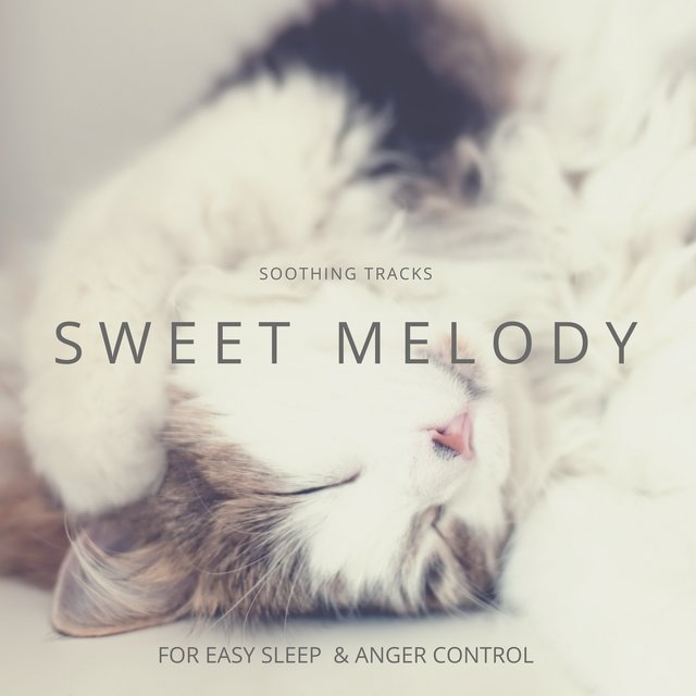 Sweet Melody - Soothing Tracks For Easy Sleep & Anger Control