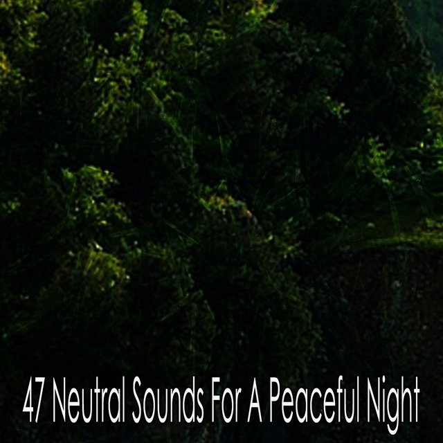 47 Neutral Sounds for a Peaceful Night