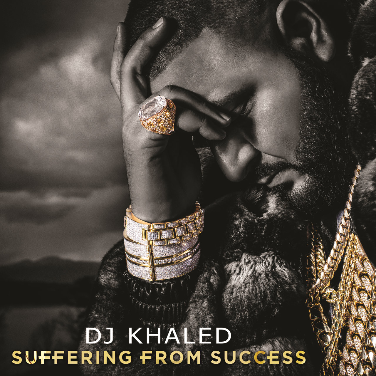 Suffering From Success (Edited Deluxe Version)