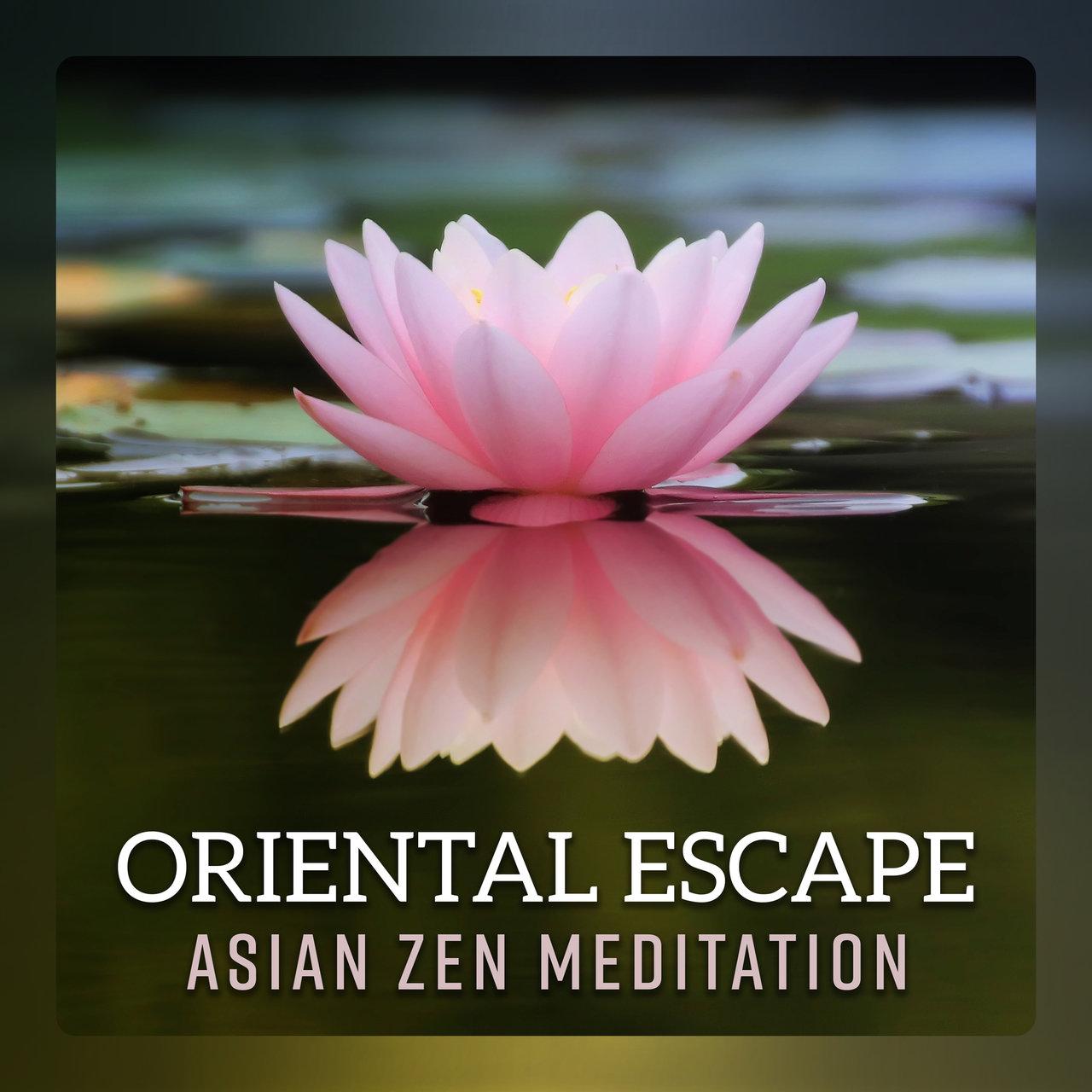 Tidal listen to asian flute music oasis on tidal oriental escape asian zen meditation music japanese chill healing yoga guzheng izmirmasajfo