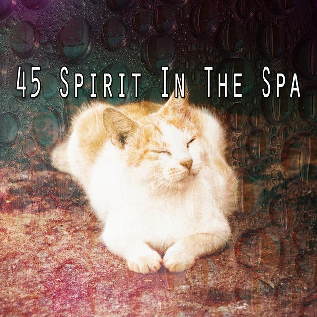 45 Spirit in the Spa