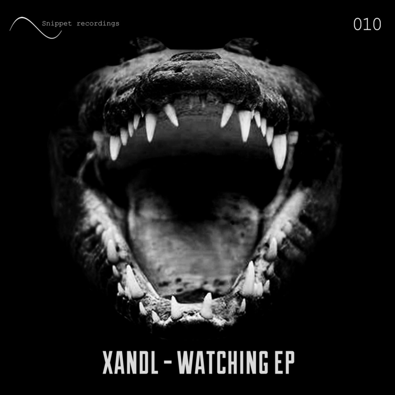 Xandl - Hook Up (original Mix)