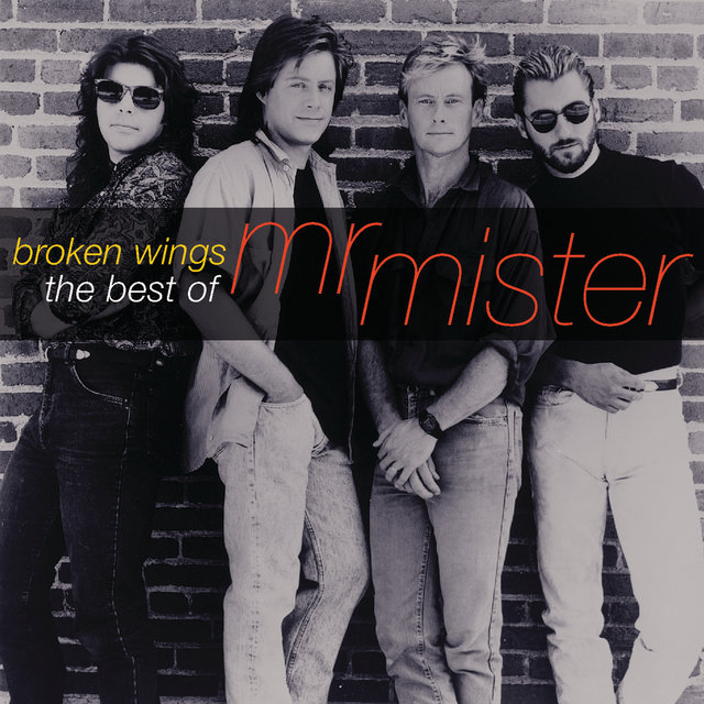 Broken Wings: The Best Of Mr. Mister