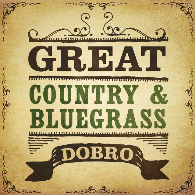Great Country & Bluegrass Dobro