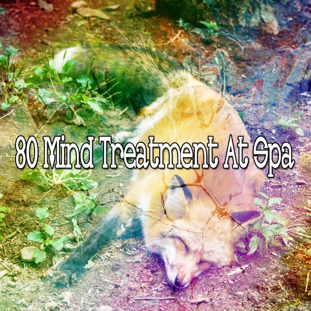80 Mind Treatment at Spa
