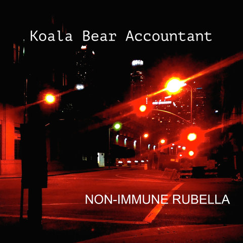 Koala Bear Accountant