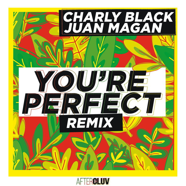 Buy You're Perfect (Remix) by Charly Black on TIDAL