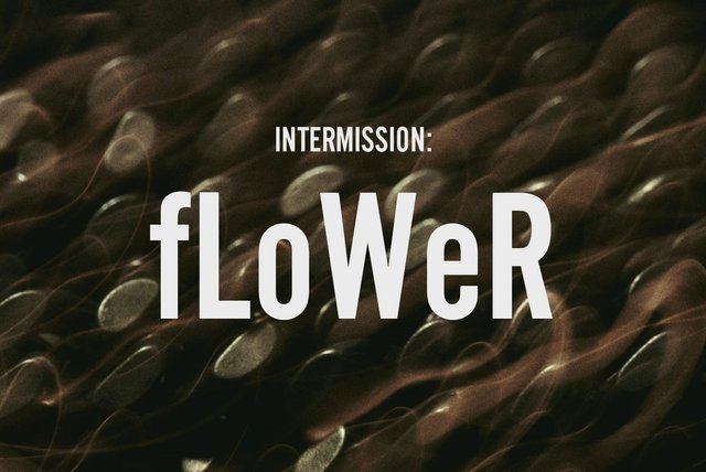 INTERMISSION: fLoWer (Lyric Video)