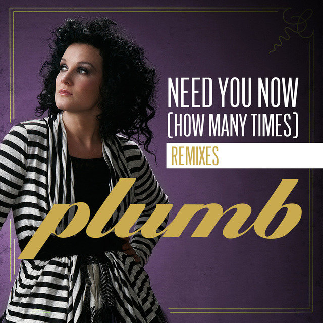 Need You Now (How Many Times) (The Remixes)
