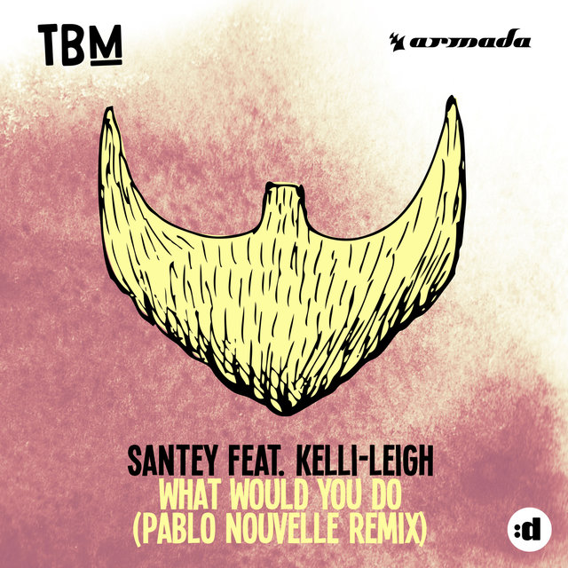 What Would You Do (Pablo Nouvelle Remix)