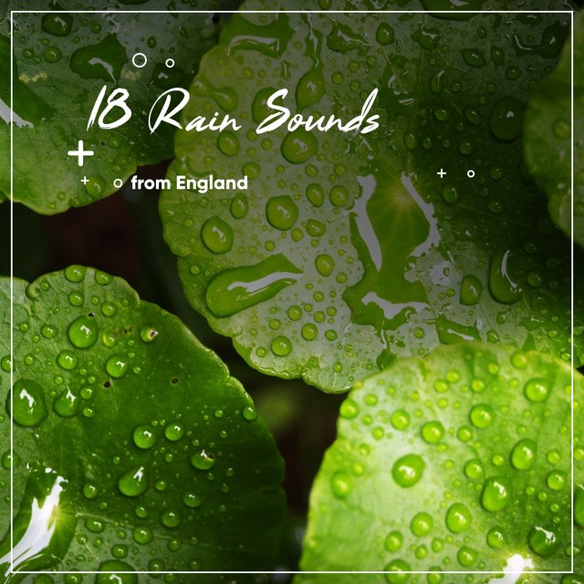 18 Real Rain Sounds from England, The Sound of the Countryside for Relaxing and Sleeping