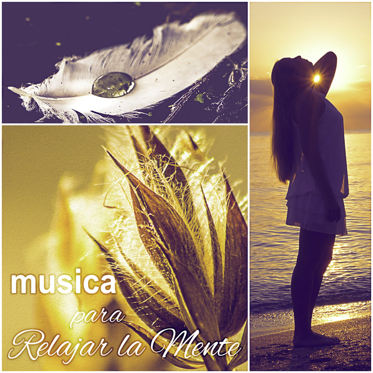 Musica relajante japonessa online dating