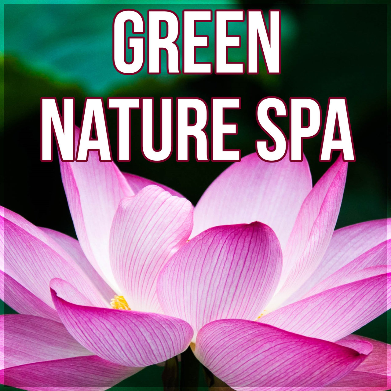 Tidal listen to unforgettable paradise spa music academy on tidal green nature spa luxury spa elixir of life relaxing background music for spa izmirmasajfo Gallery