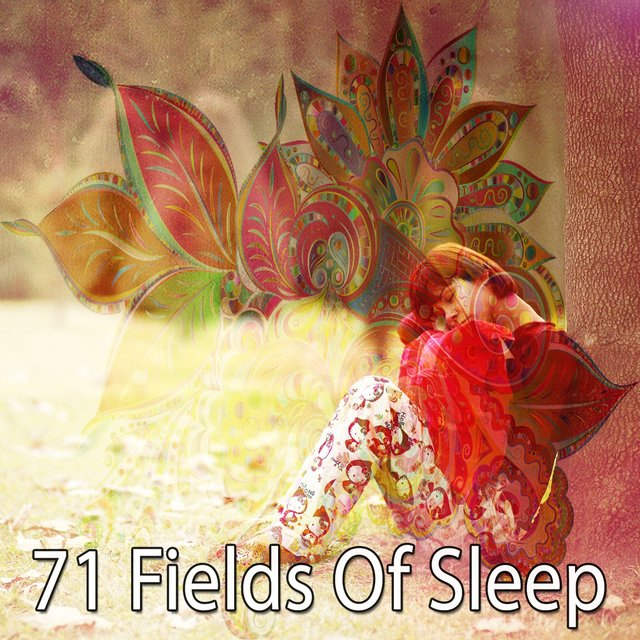 71 Fields of Sleep