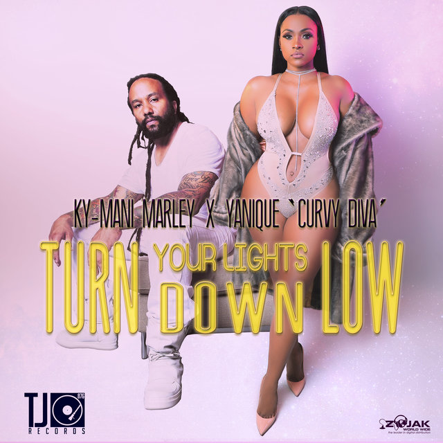 Turn Your Lights Down Low - Single