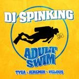 Adult Swim (feat. Tyga, Jeremih, & Velous)