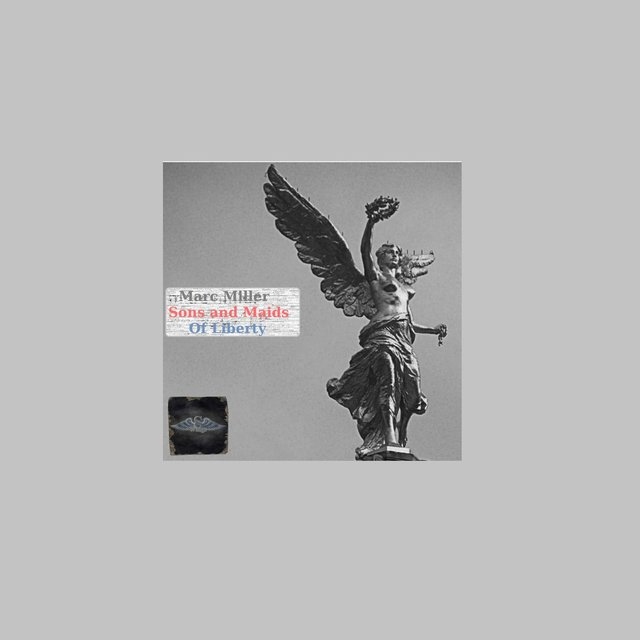 S*Wings Sons And Maids Of Liberty - Deep, Dub & Energy Mixes