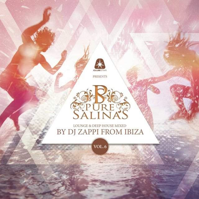 Pure Salinas, Vol. 6 (Compiled by DJ Zappi)