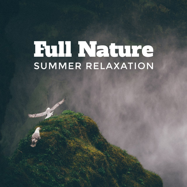 Full Nature Summer Relaxation: 2019 New Age Nature Music with Piano Melodies, Most Relaxing Sounds of Birds Singing, Flowing Water & Pouring Rain, Songs Perfect for Home Calm & Rest or Wellness Spa Salon