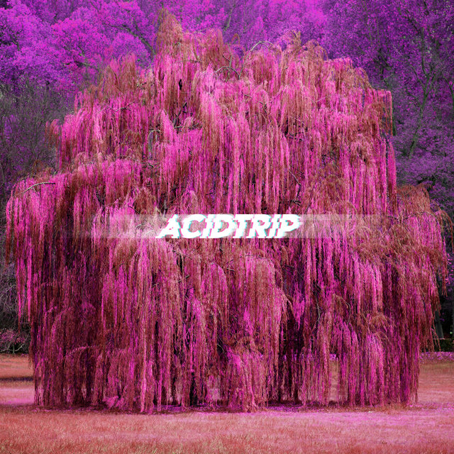 Acidtrip