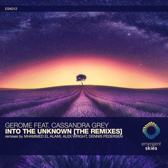 Into the Unknown [The Remixes]
