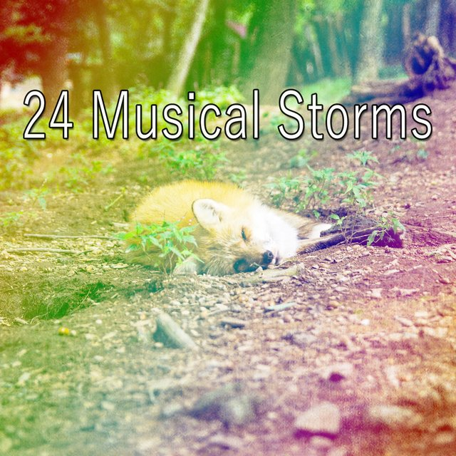 24 Musical Storms