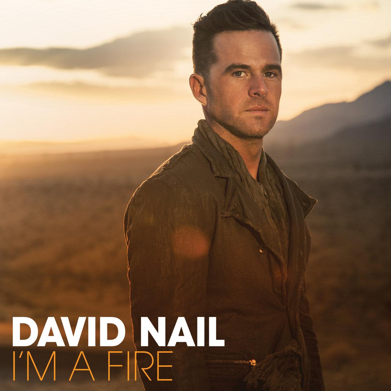TIDAL: Listen to David Nail on TIDAL