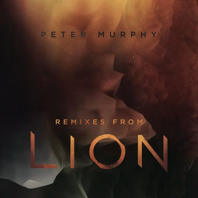 Remixes from Lion