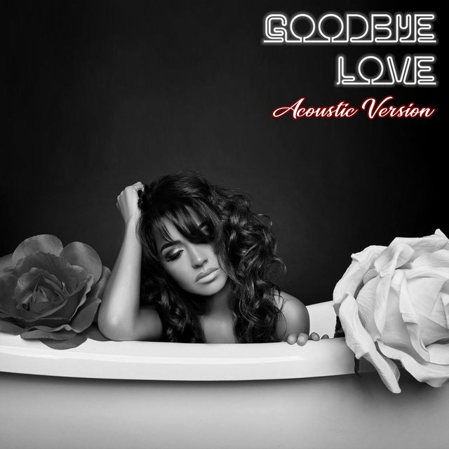 Goodbye Love (Acoustic Version)