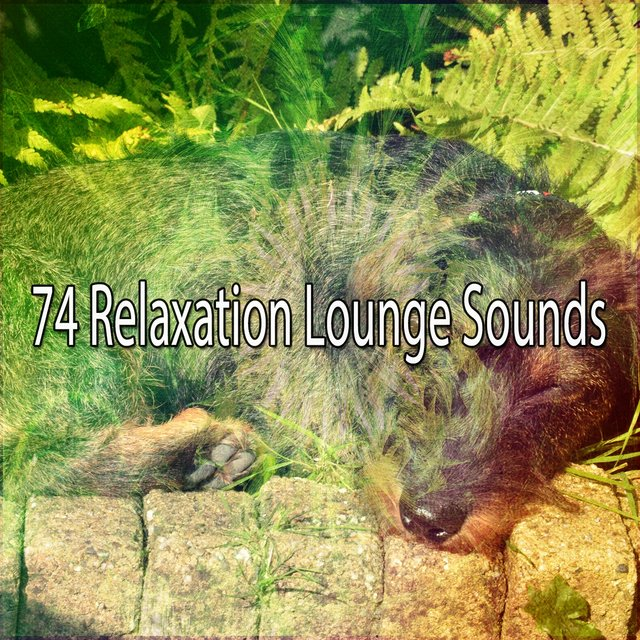 74 Relaxation Lounge Sounds